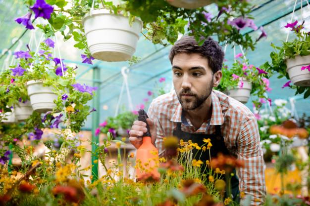 Mercado da jardinagem cresce até 10% a cada ano no Brasil e ganha os pet shops