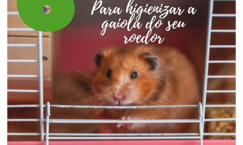 Para te ajudar a cuidar desses pequenos roedores, nós separamos um passo a passo com 6 dicas de como limpar a gaiola de forma completa: